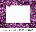 spring card with lilac flowers. ...   Shutterstock . vector #1323163448