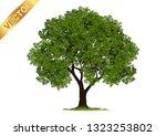 tree  isolated on white... | Shutterstock .eps vector #1323253802
