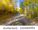 landscape straight rural lonely ... | Shutterstock . vector #1324005995