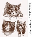 Graphical Vintage Set Of Cats ...