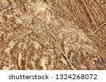 stone eroded by thousands of... | Shutterstock . vector #1324268072