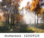 very beautiful landscape in the ... | Shutterstock . vector #132429125