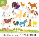 Vector Set Of Farm Animal  Pig...