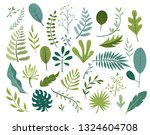 set of different tropical and... | Shutterstock .eps vector #1324604708