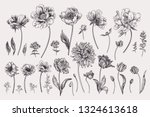 set with spring garden flowers. ... | Shutterstock .eps vector #1324613618