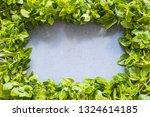 frame from fresh basil on gray... | Shutterstock . vector #1324614185