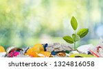 small green plant grows through ... | Shutterstock . vector #1324816058