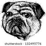 black and white vector... | Shutterstock .eps vector #132495776
