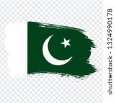flag of  pakistan from brush...
