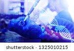 scientist hand holding a test... | Shutterstock . vector #1325010215