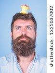 man handsome hipster long beard ... | Shutterstock . vector #1325037002