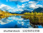 lush clouds are reflected in... | Shutterstock . vector #1325051558