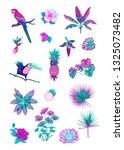 set of tropical plans  flowers... | Shutterstock .eps vector #1325073482