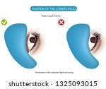 eyelash extensions. stages...   Shutterstock .eps vector #1325093015