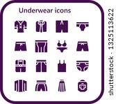 underwear icon set. 16 filled...   Shutterstock .eps vector #1325113622