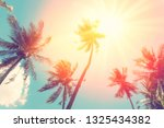 summer vacation and nature... | Shutterstock . vector #1325434382