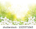 vector spring floral background. | Shutterstock .eps vector #1325571065