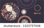 zodiac sign aquarius. the... | Shutterstock .eps vector #1325757038