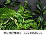 spring composition. young green ... | Shutterstock . vector #1325868302