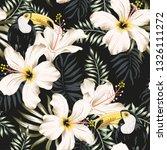 Toucans  White Hibiscus Flowers ...