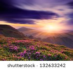 spring landscape with a... | Shutterstock . vector #132633242