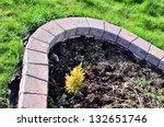 curved garden scenery | Shutterstock . vector #132651746