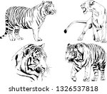 set of vector drawings on the... | Shutterstock .eps vector #1326537818