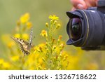 beautiful swallowtail butterfly ... | Shutterstock . vector #1326718622
