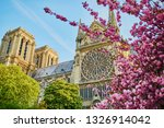 beautiful cherry blossom trees...   Shutterstock . vector #1326914042