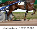 legs of a red trotter horse and ... | Shutterstock . vector #1327135082