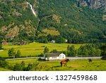 horse on grass pasture on...   Shutterstock . vector #1327459868
