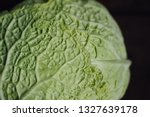close up of head of fresh ... | Shutterstock . vector #1327639178