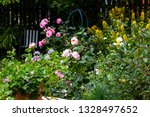 beautiful flowers in the home... | Shutterstock . vector #1328497652