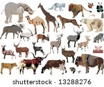 illustration with animals... | Shutterstock .eps vector #13288276
