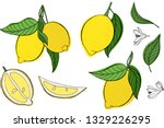 vector illustration set of... | Shutterstock .eps vector #1329226295