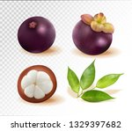 set of mangosteen images.... | Shutterstock .eps vector #1329397682