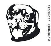dog. rottweiler. | Shutterstock . vector #132957158