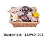 sea shell and stone in basket ...   Shutterstock . vector #1329604208