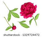 vector red peony floral... | Shutterstock .eps vector #1329724472