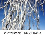 morning frost painted birch... | Shutterstock . vector #1329816035