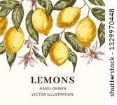 lemons hand drawn vector poster ... | Shutterstock .eps vector #1329970448