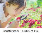 look in a magnifying glass... | Shutterstock . vector #1330075112