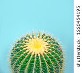 fashion tropical cactus in... | Shutterstock . vector #1330454195