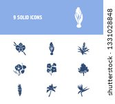 plant icon set and mallow with...