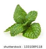 fresh spearmint leaves isolated ... | Shutterstock . vector #1331089118