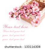 basket with spring flowers | Shutterstock . vector #133116308