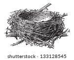 Nest Of The Blackcap Or Sylvia...