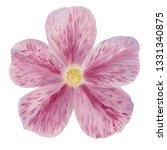 hand draw watercolor...   Shutterstock . vector #1331340875