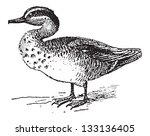Old Engraved Illustration Of...