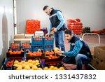 fresh vegetables and fruit in... | Shutterstock . vector #1331437832